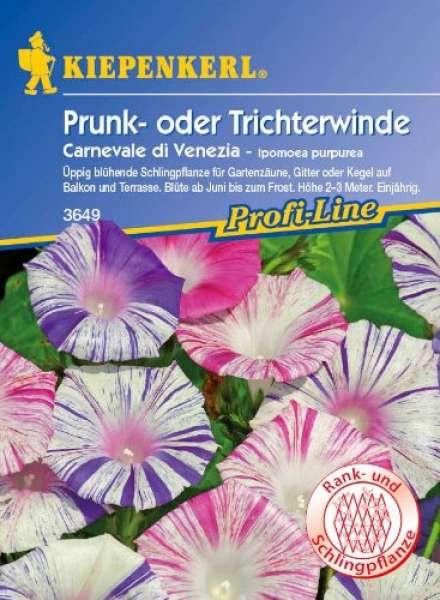 Kiepenkerl Trichterwinde Carneval di Venezia