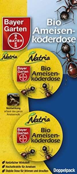 Bayer Garten Ameisen Köderdose 2 Stück