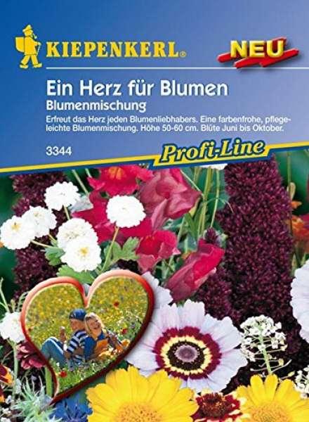 Blumenmix Ein Herz f.Blumen
