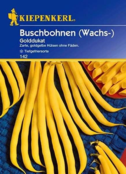 Bohne Buschb. NL W.Golddukat