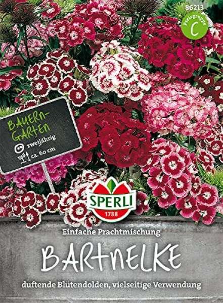 Bartnelke