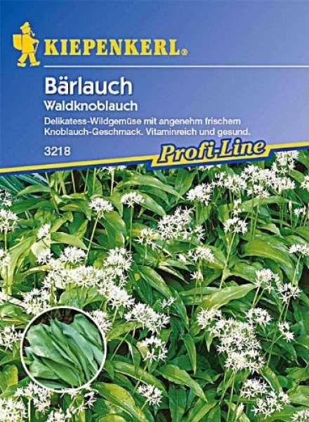Bärlauch Allium Ursinum