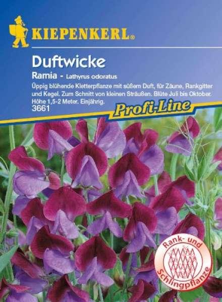 Lathyrus Ramia