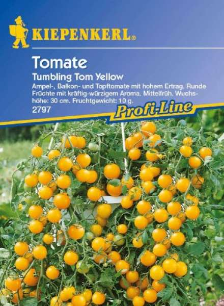 Tomate-NE Tom Yellow