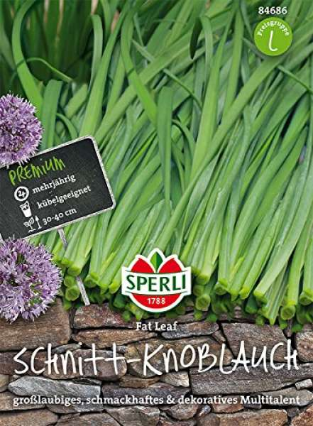 Schnitt-Knoblauch