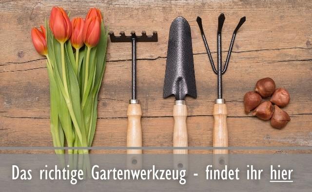 Online Kaufen Bei Online Gartencenterde