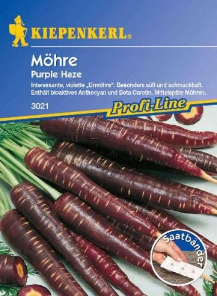 Möhre Purple Haze F1