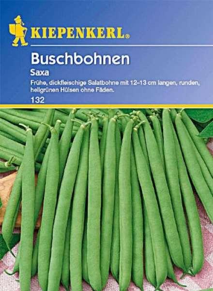 Kiepenkerl Bohne Busch Saxa