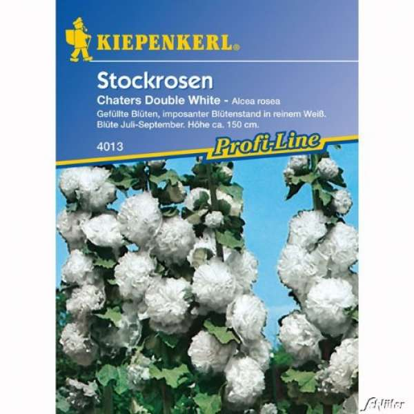Kiepenkerl Alcea Chaters White