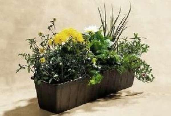 Blumenkasten Standard Kunststoff 60x17x14 cm braun