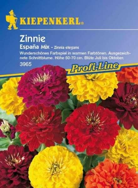 Kiepenkerl Zinnia Espana Mix