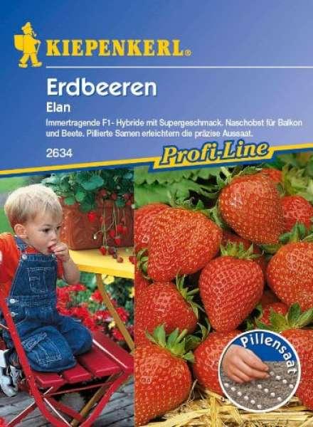 Kiepenkerl Pillensaat Erdbeeren Elan