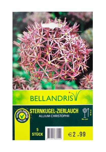 Bellandris Sternkugel - Zierlauch
