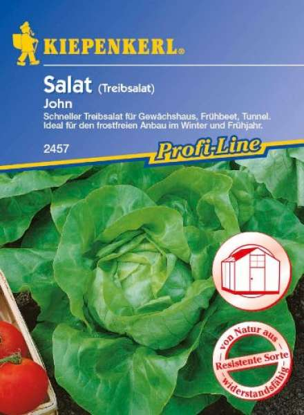Kiepenkerl Kopfsalat John