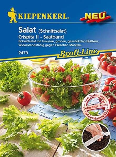 Kiepenkerl Salat Crispita II Saatband