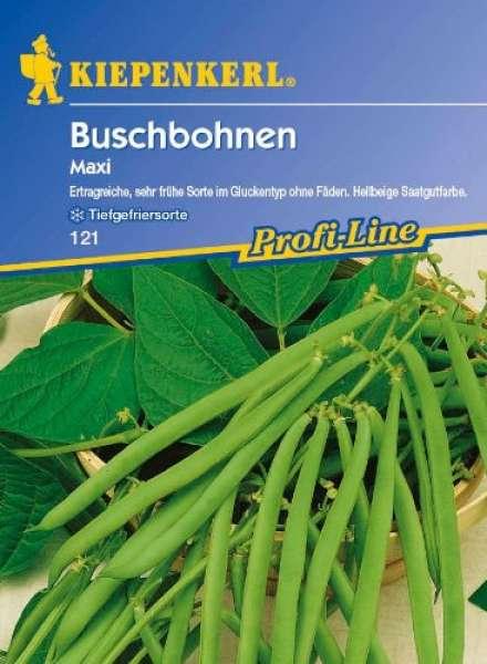 Kiepenkerl Buschbohnen Maxi