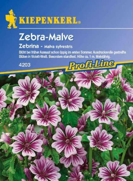 Kiepenkerl Malva Zebrina
