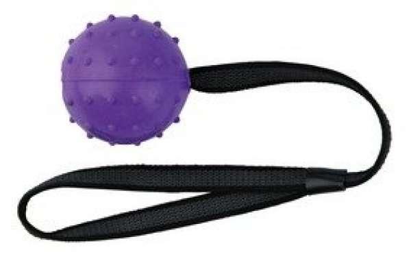 Trixie Ball am Nylongurt Naturgummi ø 6 cm/33 cm