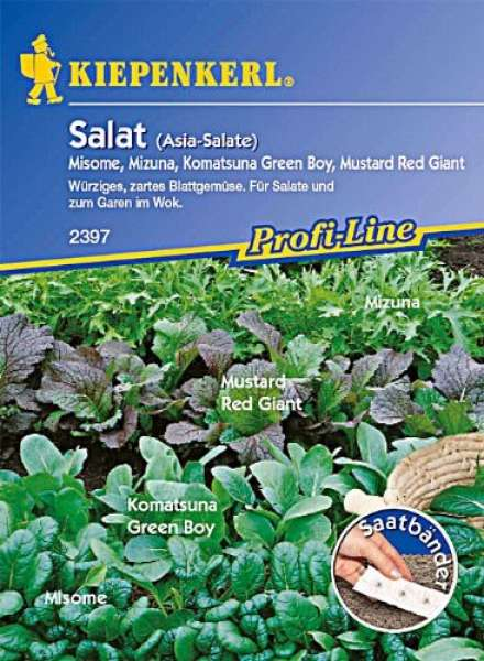 Asia Salate Saatband