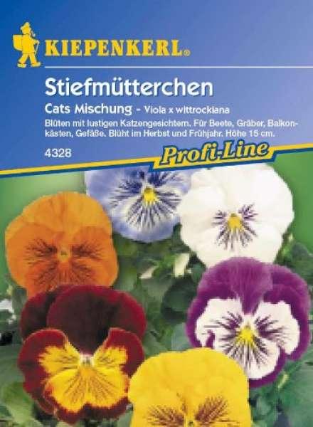 Viola Cats Mischung