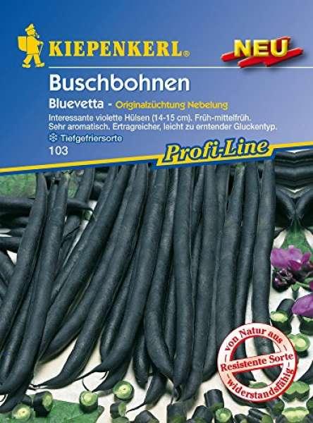 Kiepenkerl Buschbohnen Bluevetta