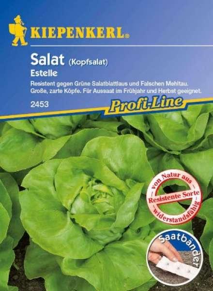 Kiepenkerl Salat Estelle