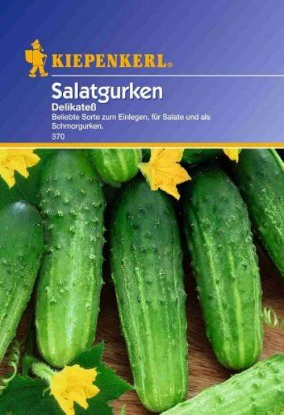 Kiepenkerl Gurke Salatg. Delikateß