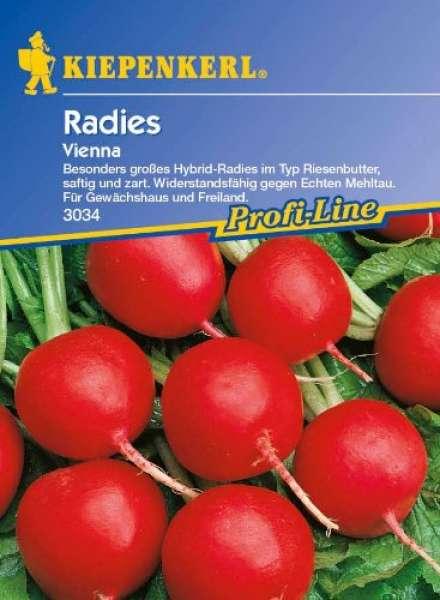 Kiepenkerl Radies Vienna