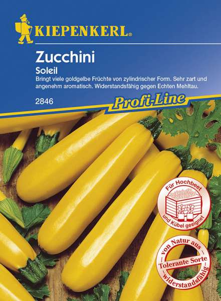 Zucchini Soleil gelb
