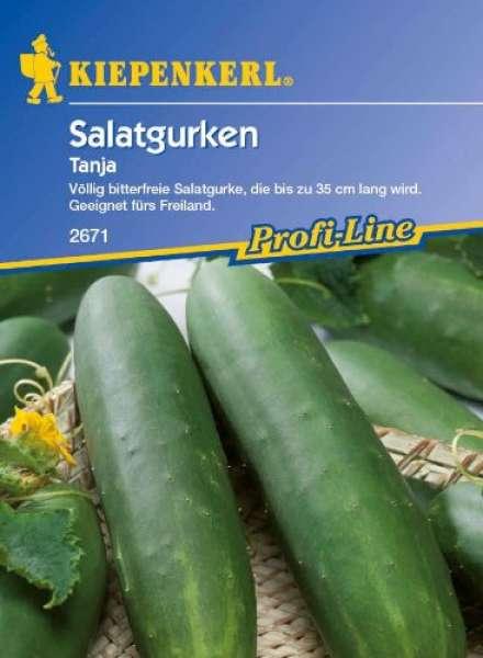 Kiepenkerl Salatgurken Tanja