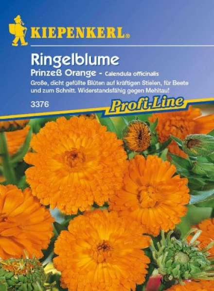 Kiepenkerl Calendula Prinzeß Orange