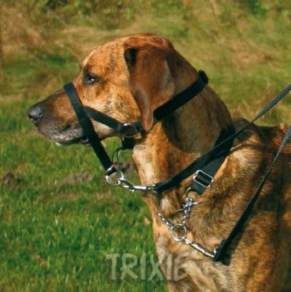 Trixie Top Trainer Ausbildungs Geschirr, XL: 46 cm