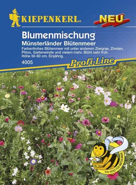 Kiepenkerl Blumenmix Münsterl. Blütenmeer